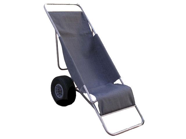 Carrello per portatori handicap vico snc - Sedie per portatori di handicap ...